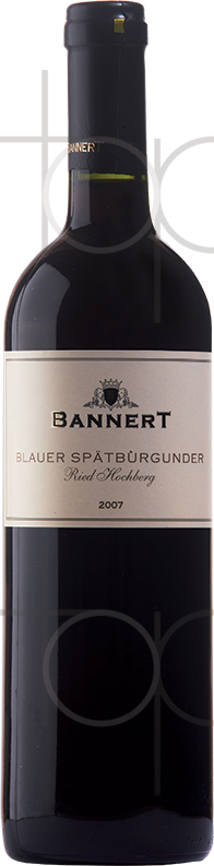11-Bl-Spätburgunder-Hochberg.png